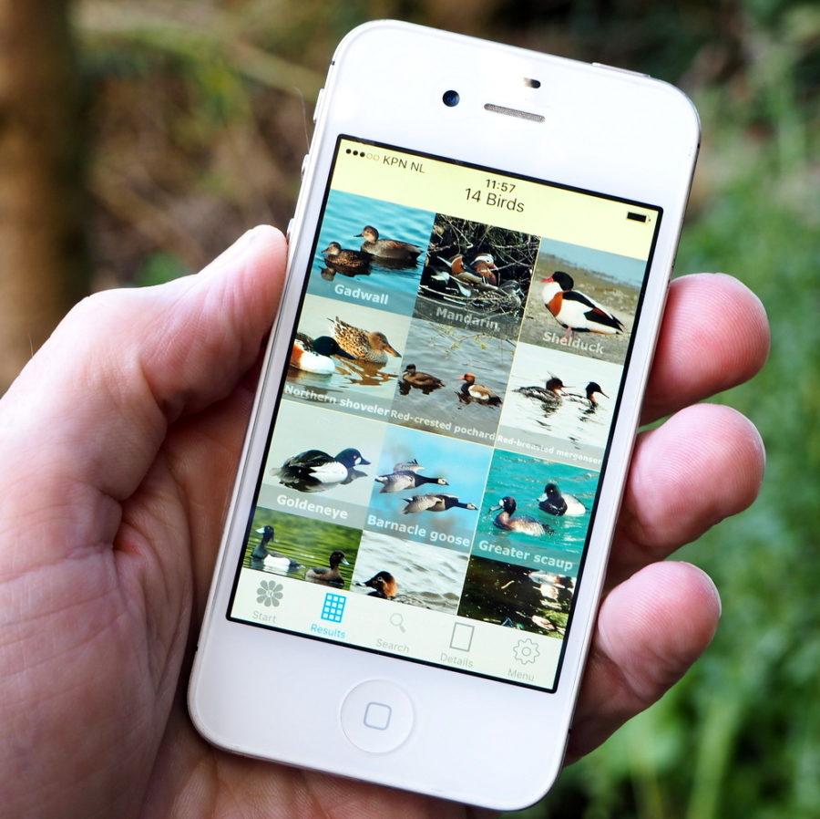 RikenMons blog AppleApp