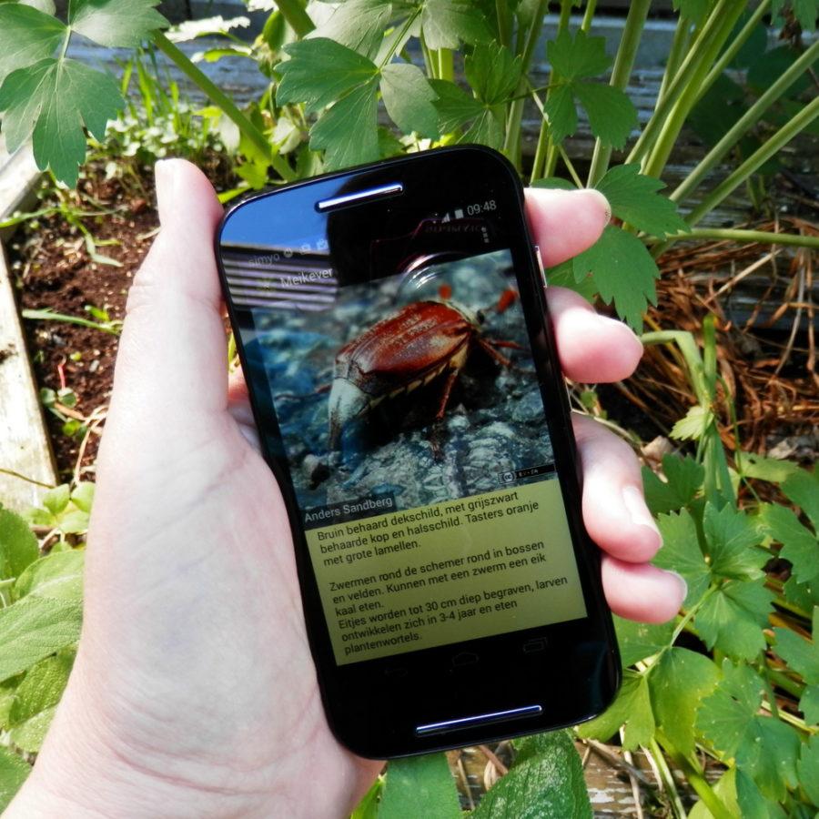 RikenMons blog android app klaar