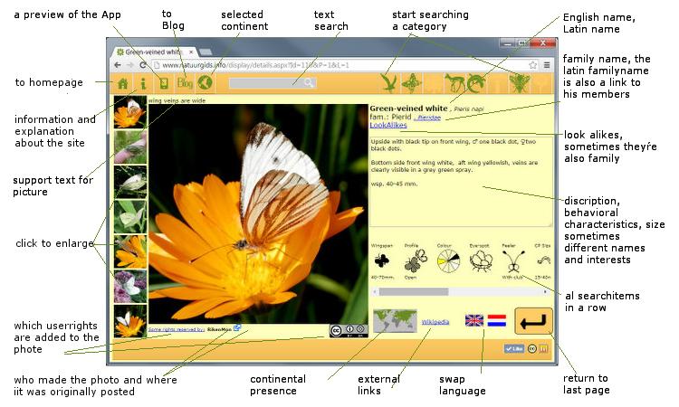 RikenMons blog websiteblog